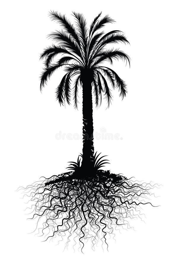 δέντρο σκίτσων φοινικών ελεύθερη απεικόνιση δικαιώματος