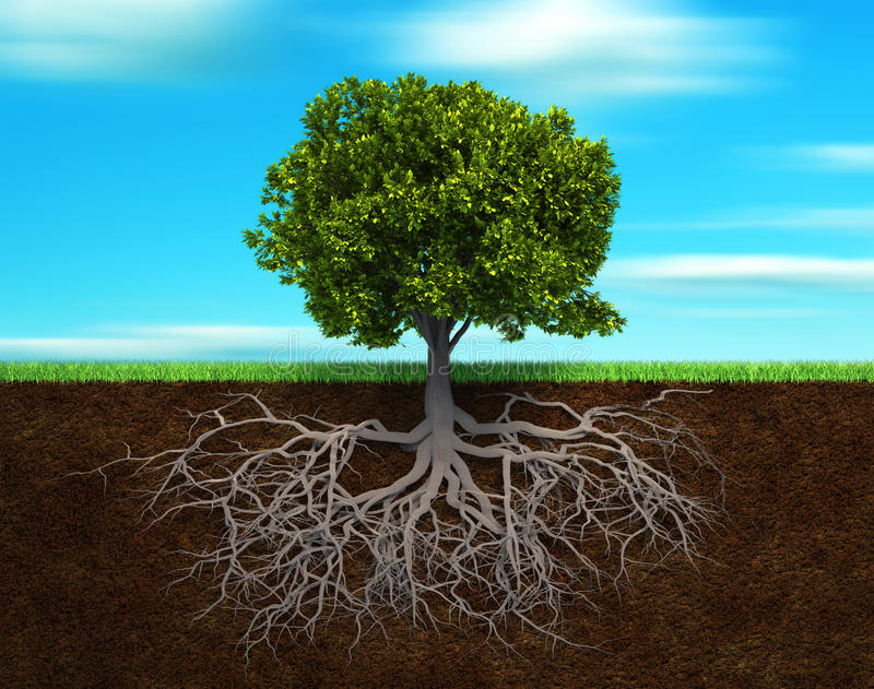δέντρο στρέμματος διανυσματική απεικόνιση