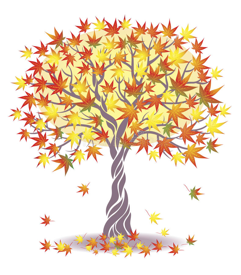 δέντρο σφενδάμνου διανυσματική απεικόνιση