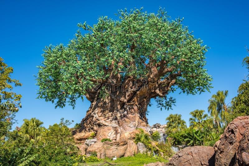 Δέντρο της ζωής στο ζωικό βασίλειο στον κόσμο Walt Disney στοκ εικόνα