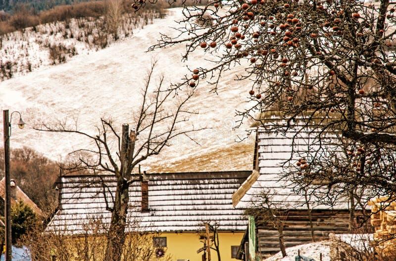 Δέντρο της Apple και ξύλινα σπίτια στο χωριό Vlkolinec, κίτρινο φίλτρο στοκ φωτογραφίες με δικαίωμα ελεύθερης χρήσης
