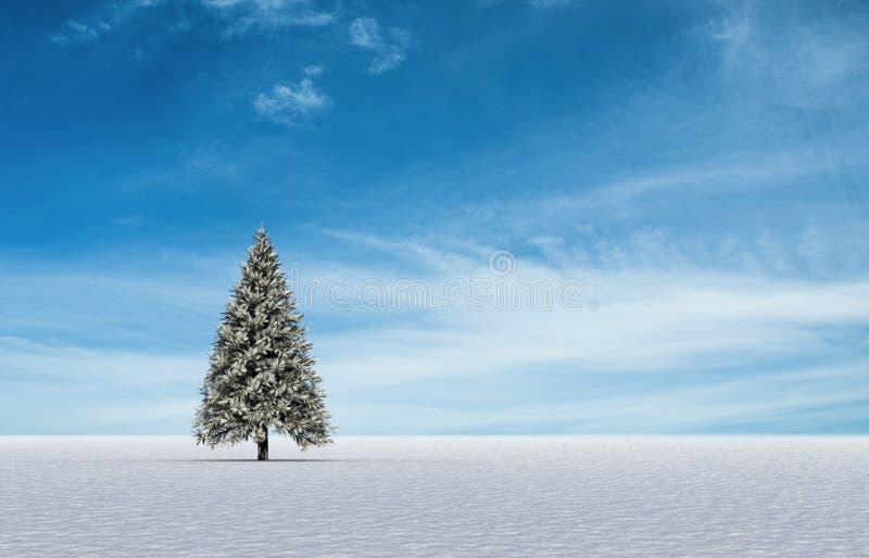 Δέντρο του FIR στο χιονώδες τοπίο ελεύθερη απεικόνιση δικαιώματος