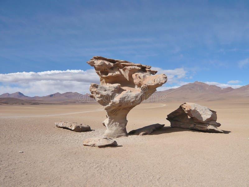 Δέντρο του Stone στοκ εικόνα