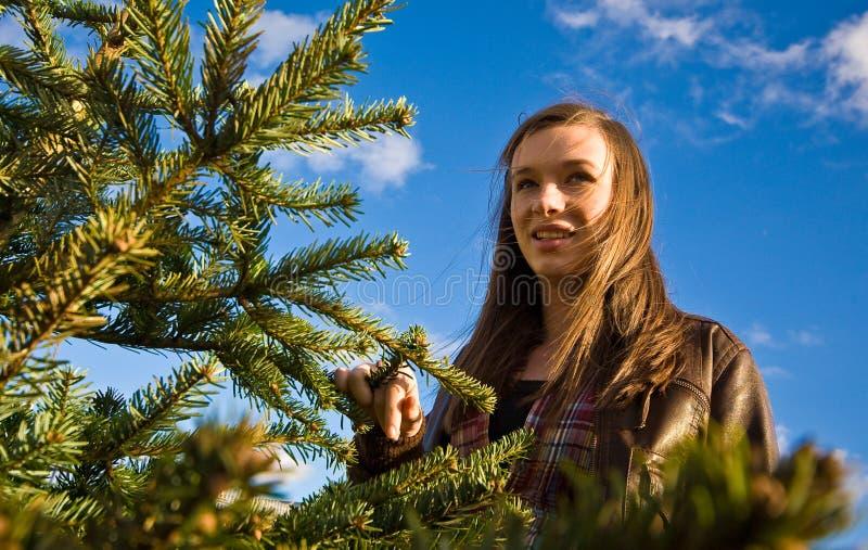 δέντρο χαμόγελου κοριτ&sigma στοκ εικόνες
