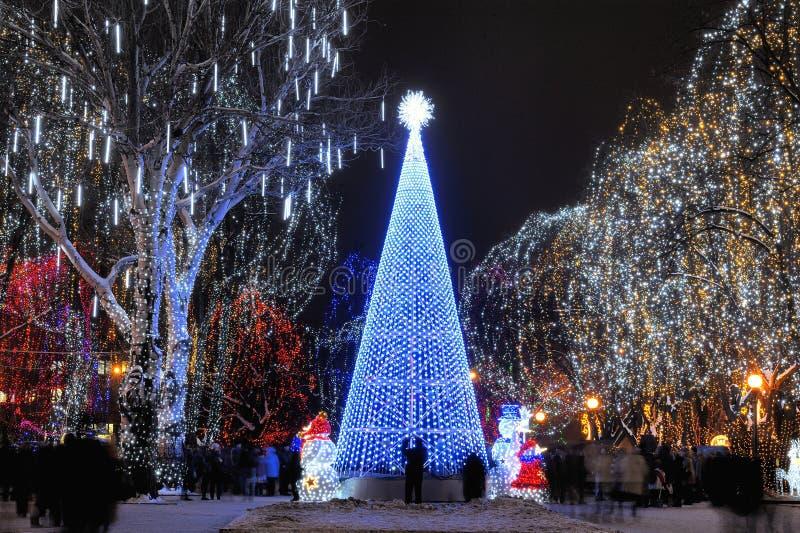 δέντρο Χριστουγέννων γει&a στοκ εικόνες
