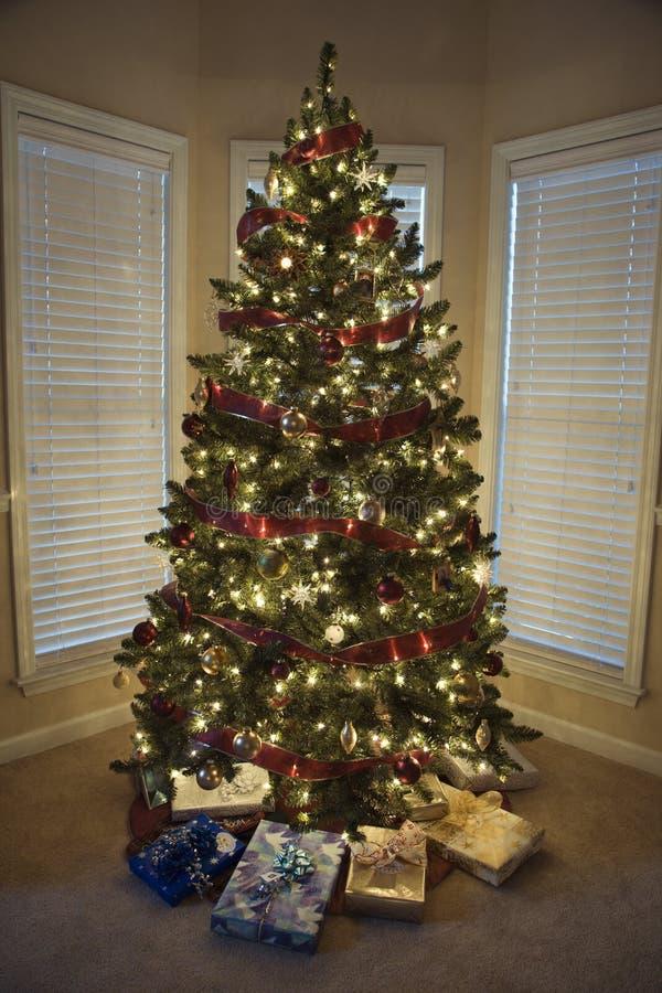 δέντρο χριστουγεννιάτικων δώρων κάτω στοκ εικόνες