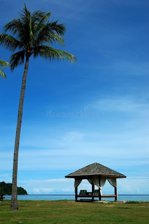 Download δέντρο 2 κάτω στοκ εικόνα. εικόνα από ασιατικοί, χαλαρώστε - 53871