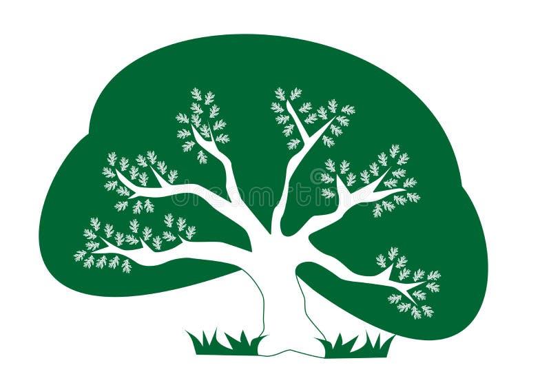 δέντρο eco ελεύθερη απεικόνιση δικαιώματος