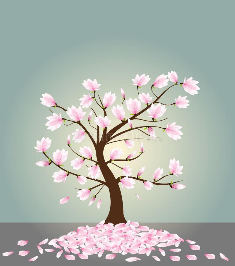 δέντρο magnolia ελεύθερη απεικόνιση δικαιώματος