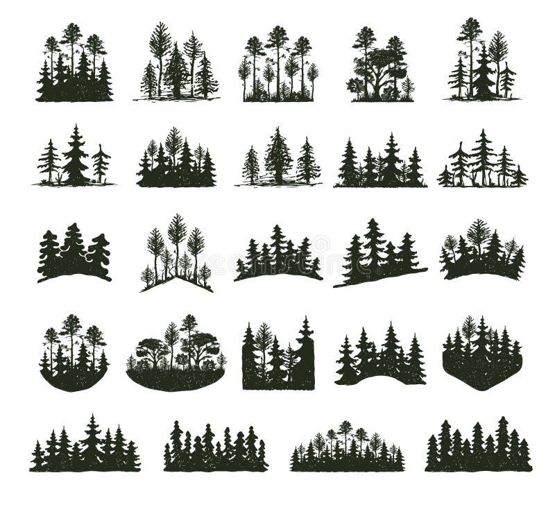 Δέντρων υπαίθρια κωνοφόρα φυσικά διακριτικά σκιαγραφιών ταξιδιού μαύρα, κομψοί κέδρος κλάδων ανώτατων πεύκων και περίληψη φύλλων  διανυσματική απεικόνιση