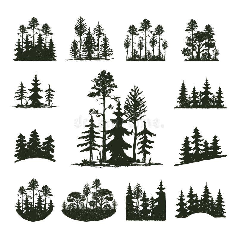 Δέντρων υπαίθριο κωνοφόρο φυσικό διακριτικό σκιαγραφιών ταξιδιού μαύρο, κομψοί κέδρος κλάδων ανώτατων πεύκων και περίληψη φύλλων  διανυσματική απεικόνιση