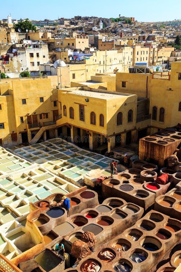 Δέρμα που πεθαίνει σε έναν παραδοσιακό φλοιό σε Fes, Μαρόκο στοκ εικόνες με δικαίωμα ελεύθερης χρήσης