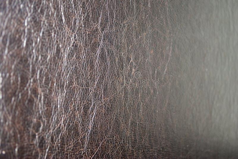 δέρμα στοκ φωτογραφίες με δικαίωμα ελεύθερης χρήσης