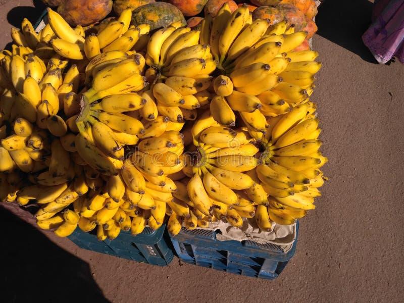 Δέσμες της μπανάνας στοκ εικόνες με δικαίωμα ελεύθερης χρήσης