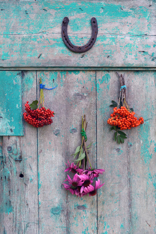 Δέσμες των χορταριών και των μούρων με το πέταλο στην πόρτα στοκ εικόνες