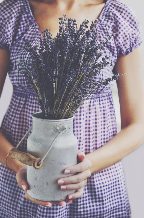 Δέσμη εκμετάλλευσης γυναικών lavender στο παλαιό καρδάρι γάλακτος στοκ φωτογραφία