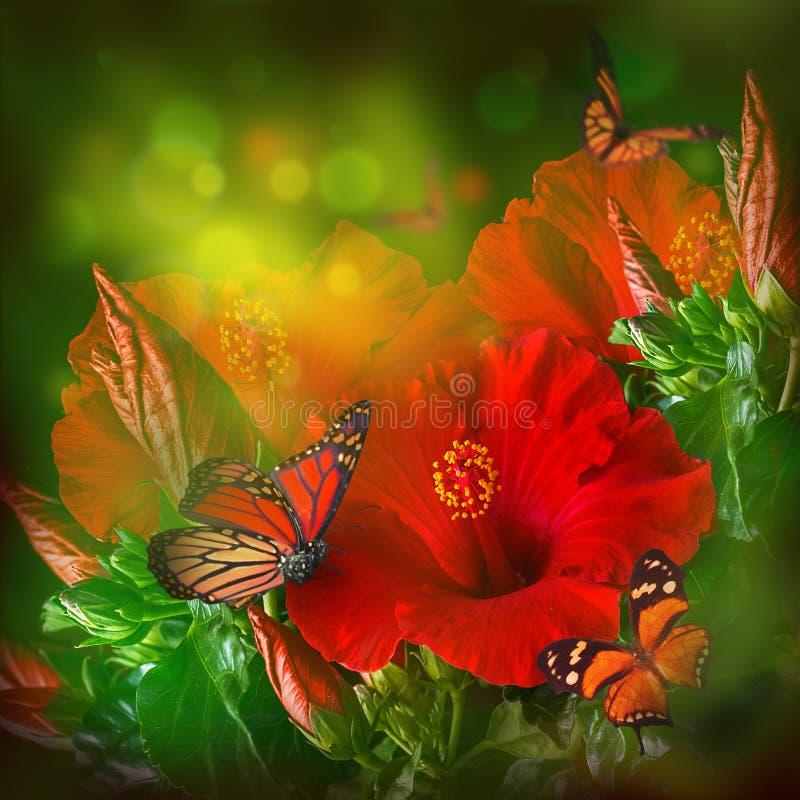 Δέσμη κόκκινα hibiscus διανυσματική απεικόνιση