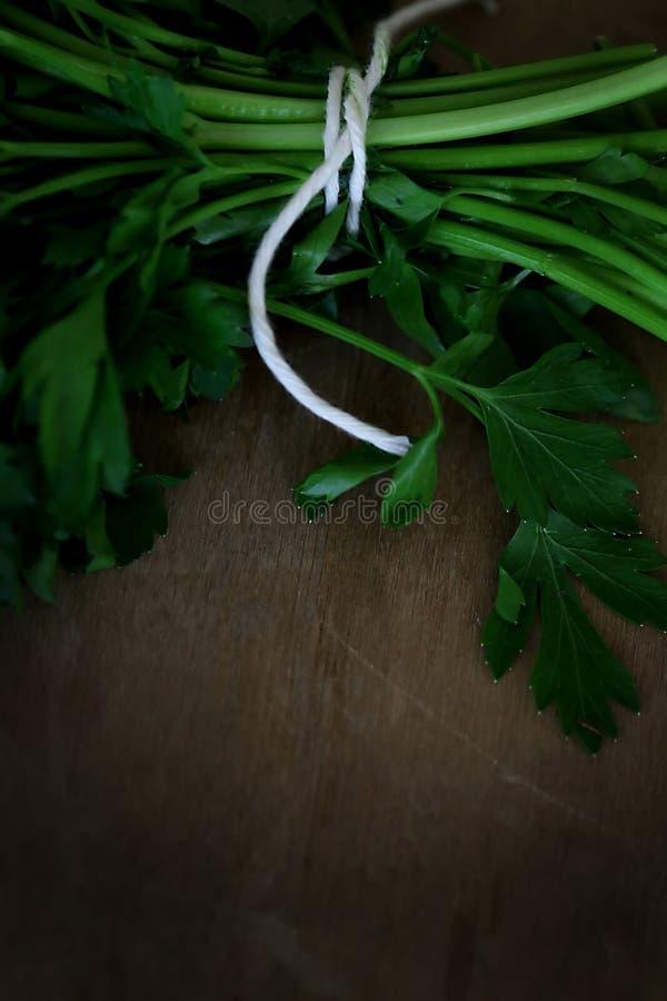 Δέσμη μαϊντανού στοκ φωτογραφίες με δικαίωμα ελεύθερης χρήσης