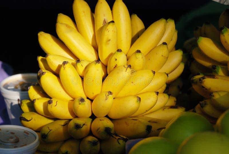 Δέσμη μπανανών στην αγορά γεωργικών προϊόντων στην Πόλη του Μεξικού στοκ φωτογραφία