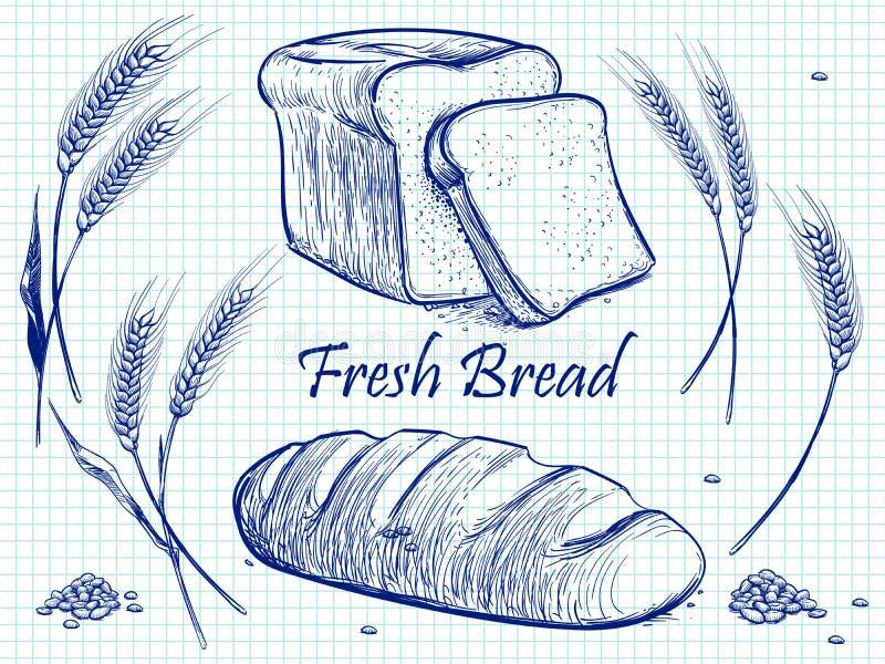 Δέσμη σκίτσων των αυτιών, του ψωμιού και των σιταριών σίτου Διανυσματική απεικόνιση αρτοποιείων στη σελίδα σημειωματάριων ελεύθερη απεικόνιση δικαιώματος