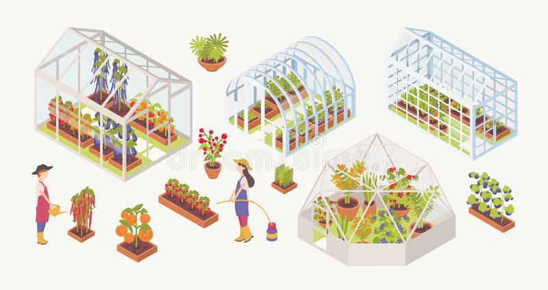 Δέσμη των διάφορων θερμοκηπίων γυαλιού με τις εγκαταστάσεις, τα λουλούδια και την ανάπτυξη λαχανικών μέσα, τους κηπουρούς, αγρότε διανυσματική απεικόνιση