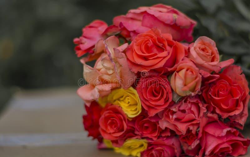 Δέσμη των ροδαλών λουλουδιών - πολύχρωμων στοκ φωτογραφίες με δικαίωμα ελεύθερης χρήσης