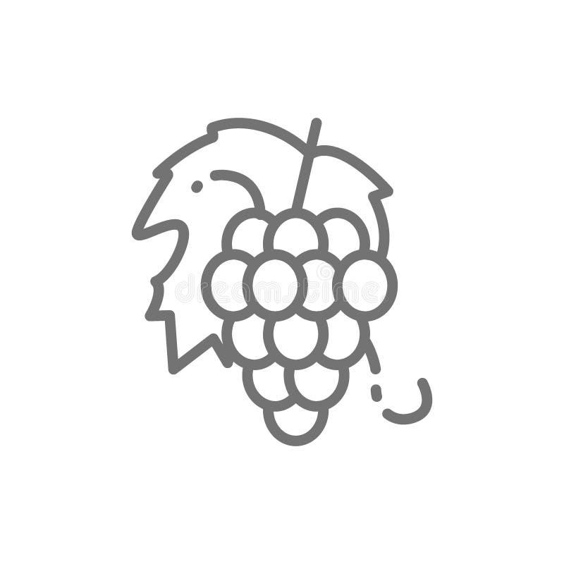 Δέσμη των σταφυλιών, εικονίδιο γραμμών φρούτων διανυσματική απεικόνιση
