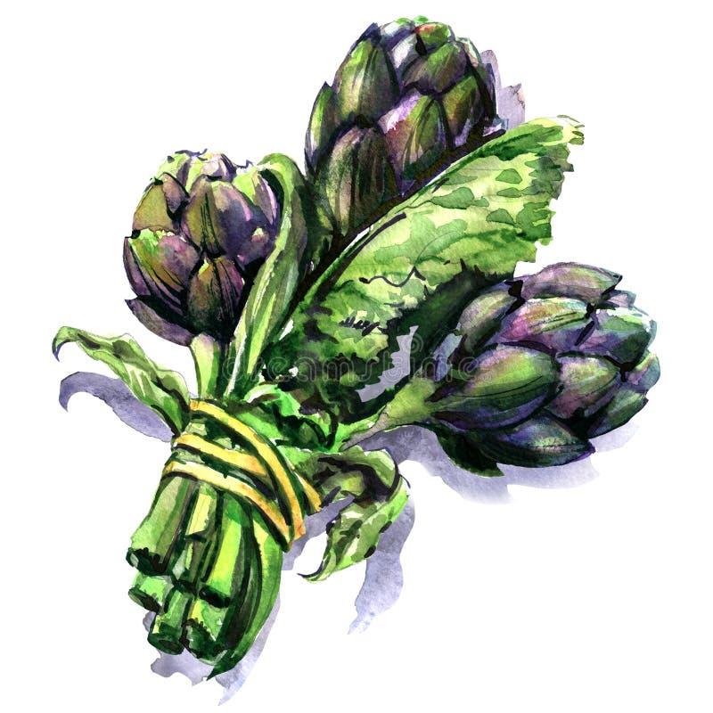 Δέσμη των φρέσκων πορφυρών αγκιναρών με το μίσχο και το φύλλο, λαχανικό που απομονώνεται, συρμένη χέρι απεικόνιση watercolor στο  απεικόνιση αποθεμάτων