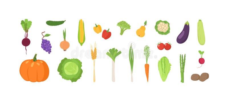 Δέσμη των ώριμων φρέσκων οργανικών φρούτων και λαχανικών που απομονώνονται στο άσπρο υπόβαθρο Σύνολο φυσικών συγκομιδών, θρεπτικό ελεύθερη απεικόνιση δικαιώματος