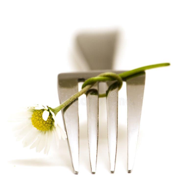 Δίκρανο και λουλούδι στοκ εικόνα