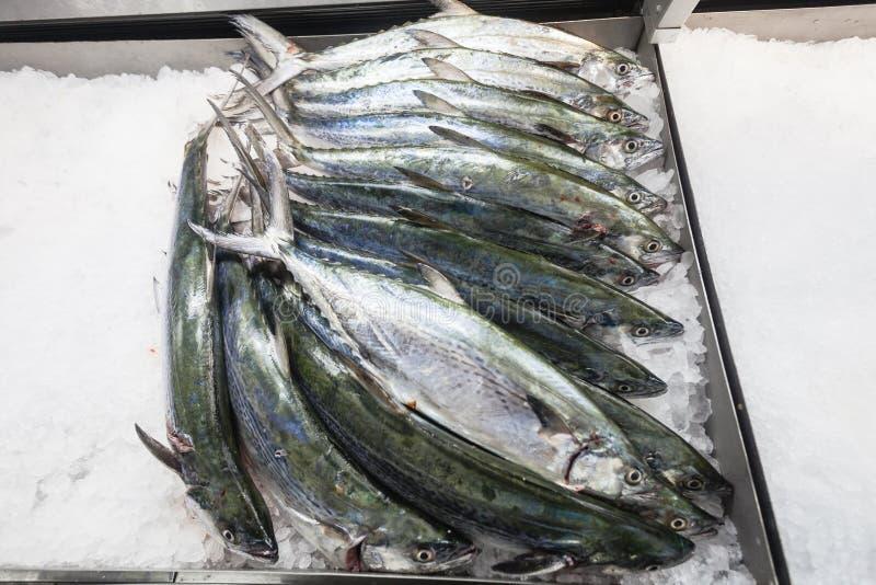 Δίσκοι πάγου Barracuda αγοράς ψαριών στοκ εικόνες