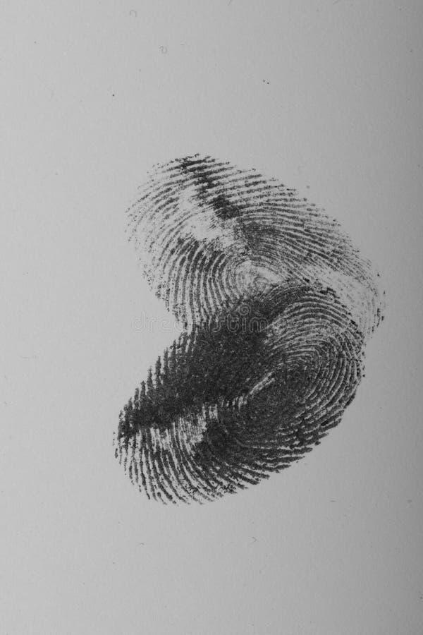 Δακτυλικά αποτυπώματα που κατασκευάζουν την καρδιά στη γραπτή φωτογραφία στοκ εικόνες