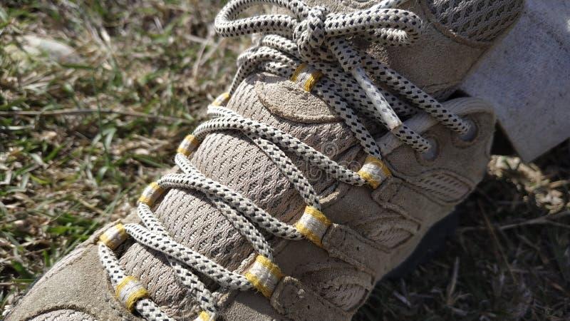 Δαντέλλες παπουτσιών πεζοπορίας στοκ εικόνες