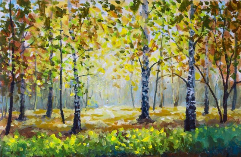Δασικά, άσπρα δέντρα σημύδων φθινοπώρου το δασικό, χρυσό φθινόπωρο φθινοπώρου ελεύθερη απεικόνιση δικαιώματος