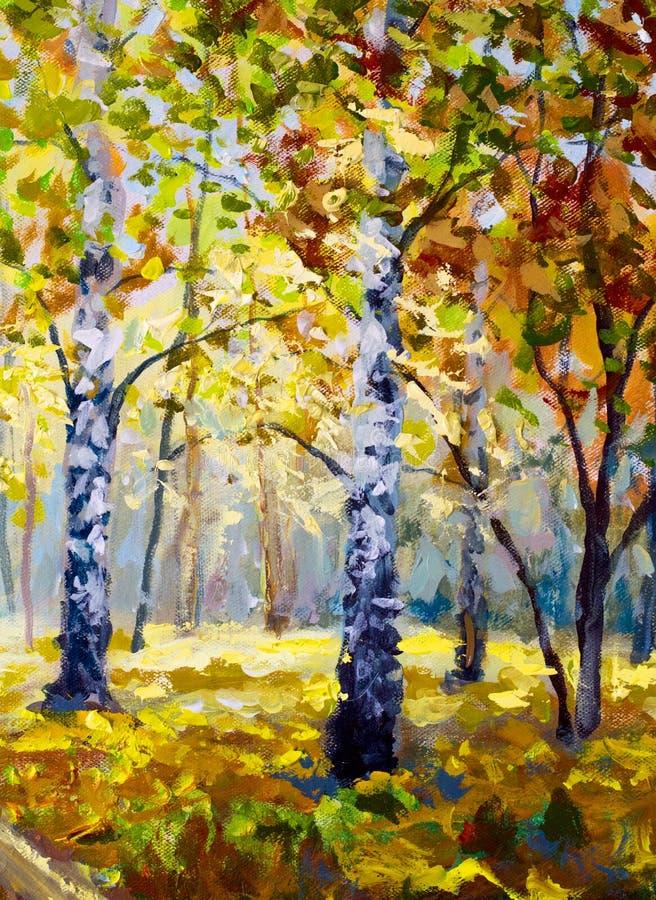 Δασικά, άσπρα δέντρα σημύδων φθινοπώρου το δασικό, χρυσό φθινόπωρο φθινοπώρου, πορτοκαλιά φύση φθινοπώρου Δρόμος στο δασικό πράσι διανυσματική απεικόνιση