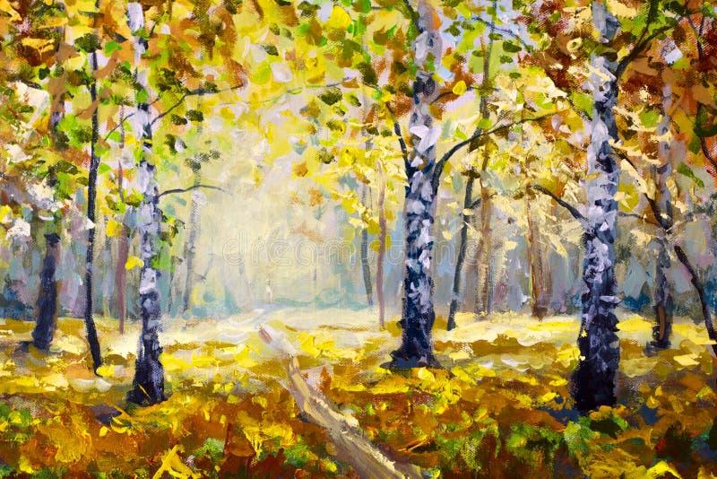 Δασικά, άσπρα δέντρα σημύδων φθινοπώρου το δασικό, χρυσό φθινόπωρο φθινοπώρου, πορτοκαλιά φύση φθινοπώρου Δρόμος στο δασικό πράσι ελεύθερη απεικόνιση δικαιώματος