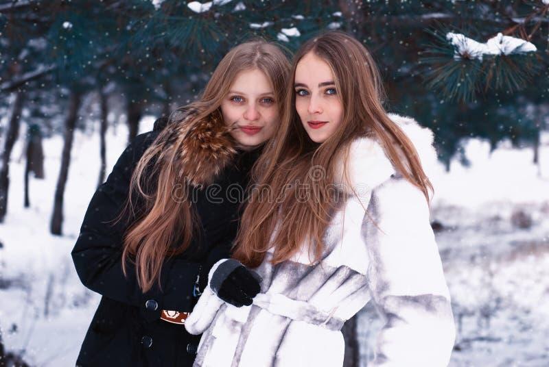 δασικά κορίτσια που χαμογελούν το χειμώνα δύο στοκ εικόνες