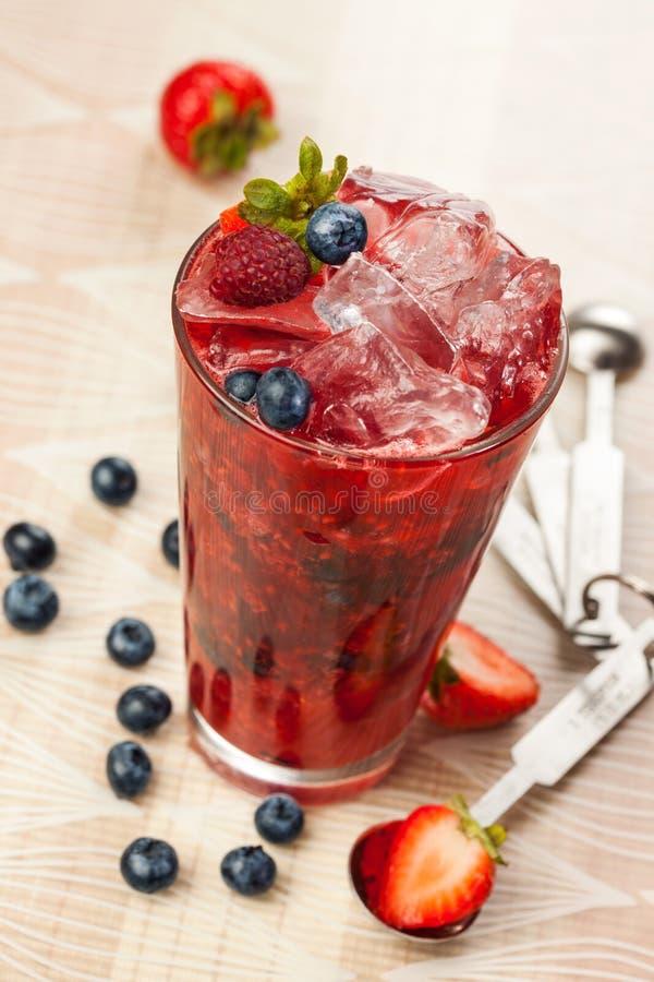 Δασικά φρούτα ποτών στοκ φωτογραφία με δικαίωμα ελεύθερης χρήσης