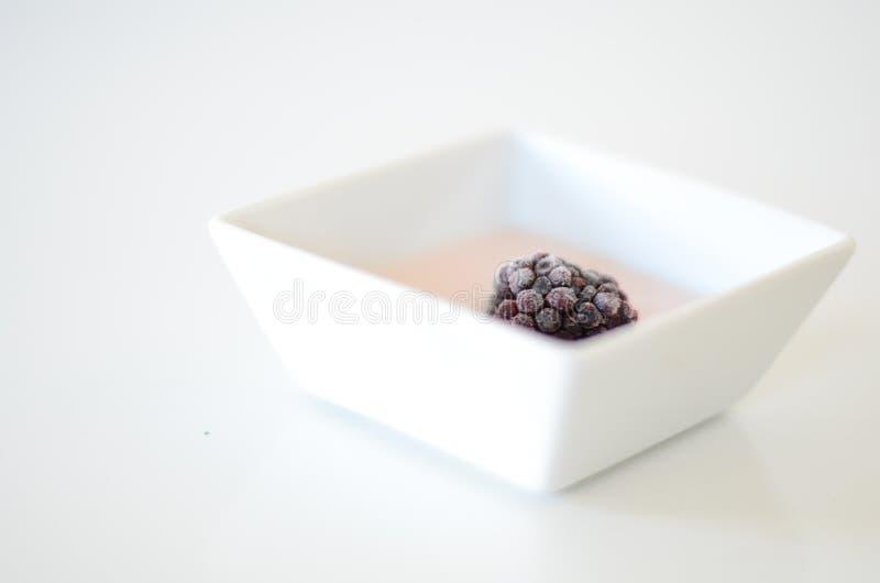 Δασικά φρούτα στοκ φωτογραφία με δικαίωμα ελεύθερης χρήσης