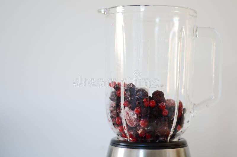 Δασικά φρούτα στοκ εικόνες