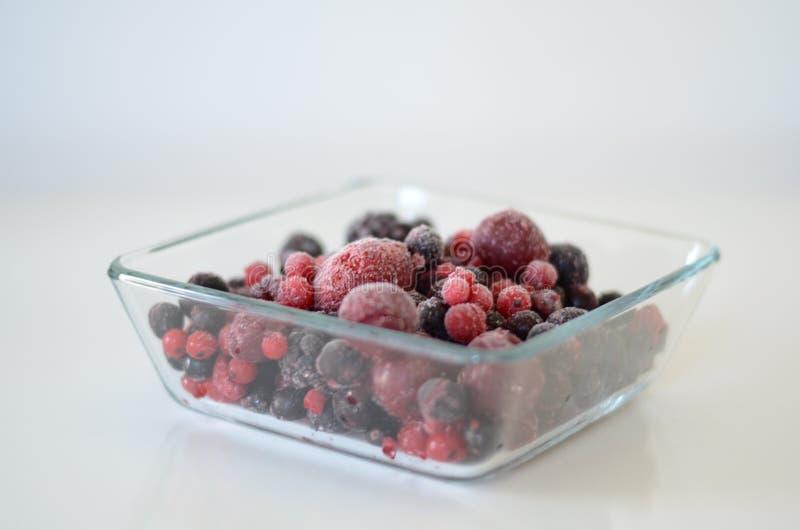 Δασικά φρούτα στοκ εικόνα με δικαίωμα ελεύθερης χρήσης
