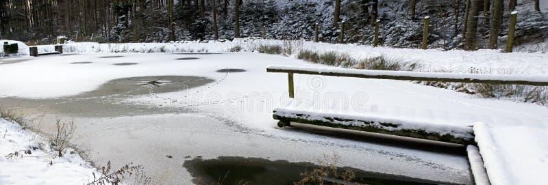 Δασική λίμνη με την παγωμένη επιφάνεια στοκ εικόνα με δικαίωμα ελεύθερης χρήσης