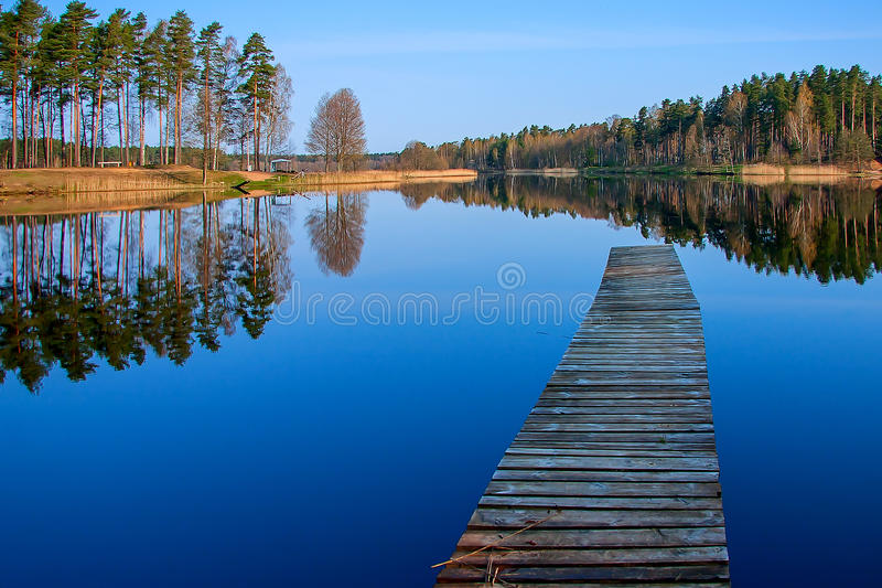 Δασική αντανάκλαση στη λίμνη στοκ εικόνες
