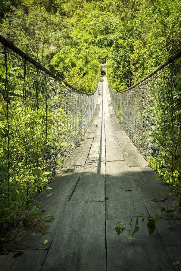 Δασική γέφυρα για πεζούς Γουατεμάλα στοκ φωτογραφίες με δικαίωμα ελεύθερης χρήσης