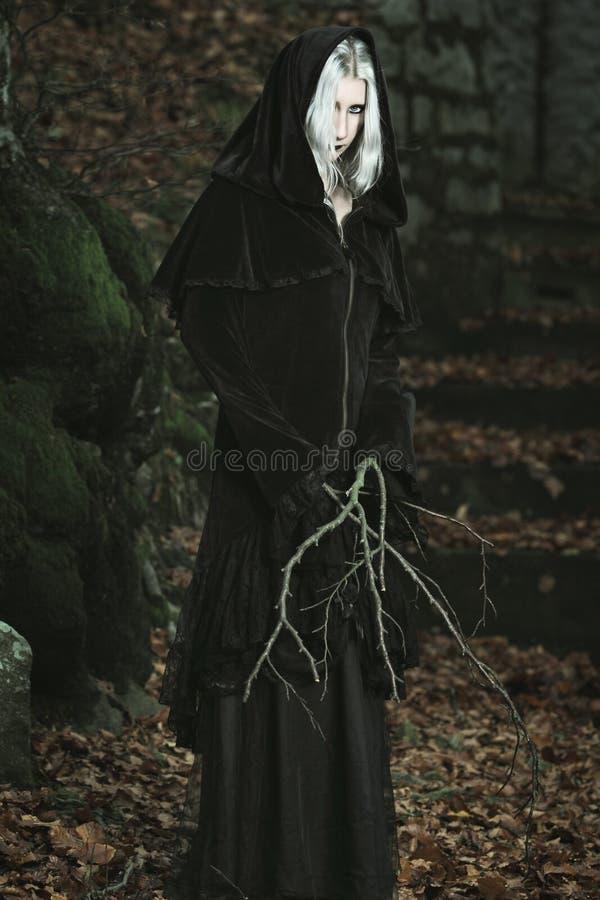 Δασική μάγισσα στοκ φωτογραφία