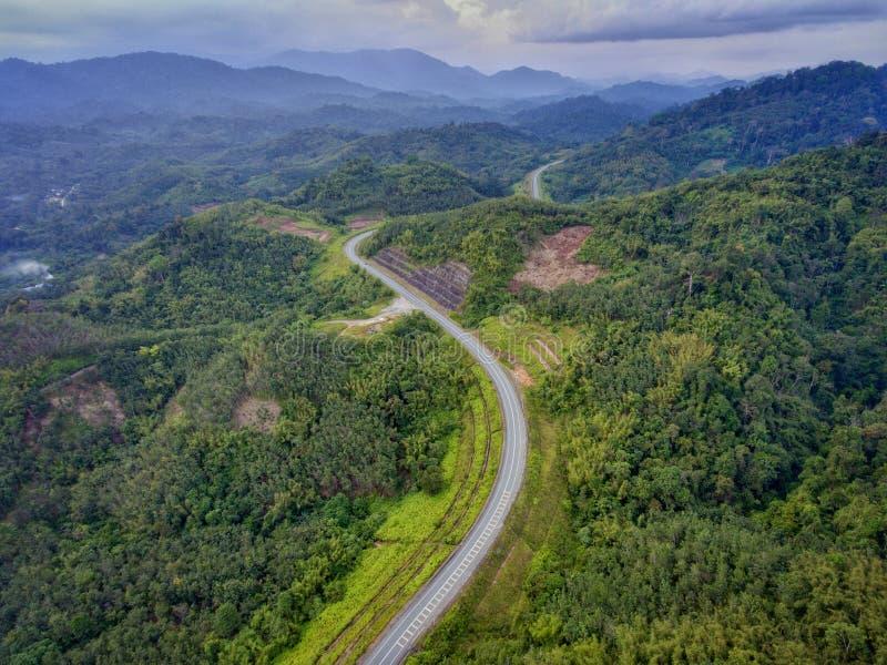Δασική πράσινη εθνική οδός στοκ φωτογραφία
