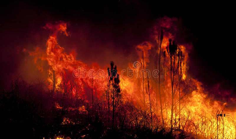 Δασική πυρκαγιά κοντά σε ένα σπίτι στοκ φωτογραφία