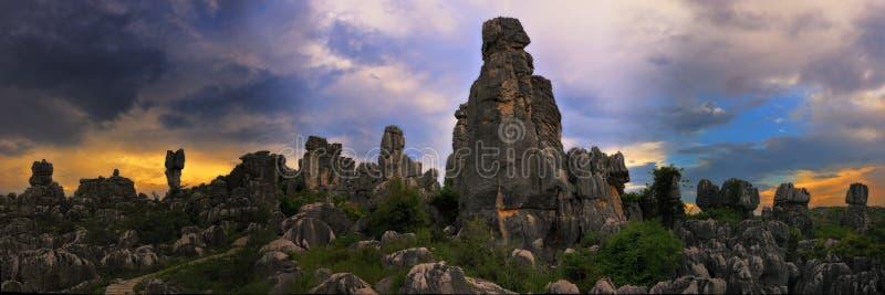 δασική s πέτρα της Κίνας στοκ εικόνα με δικαίωμα ελεύθερης χρήσης