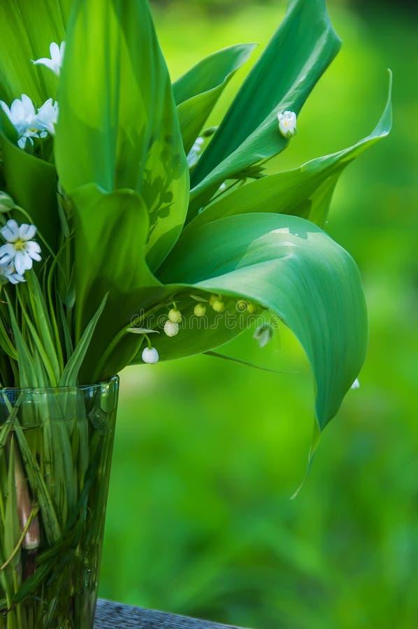 Δασικοί κρίνοι ανθοδεσμών της κοιλάδας και των ευγενών άσπρων λουλουδιών στοκ εικόνες