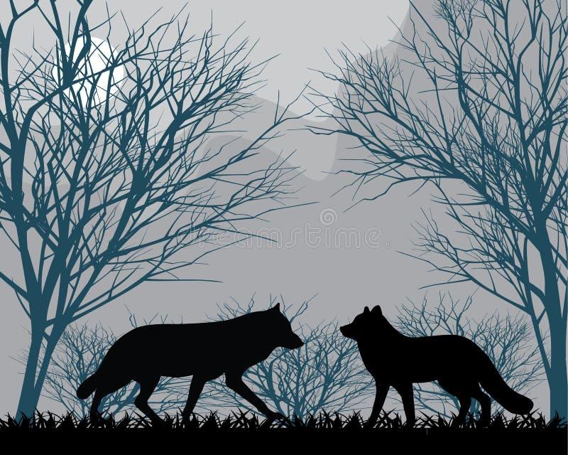 Δασικοί λύκοι ελεύθερη απεικόνιση δικαιώματος
